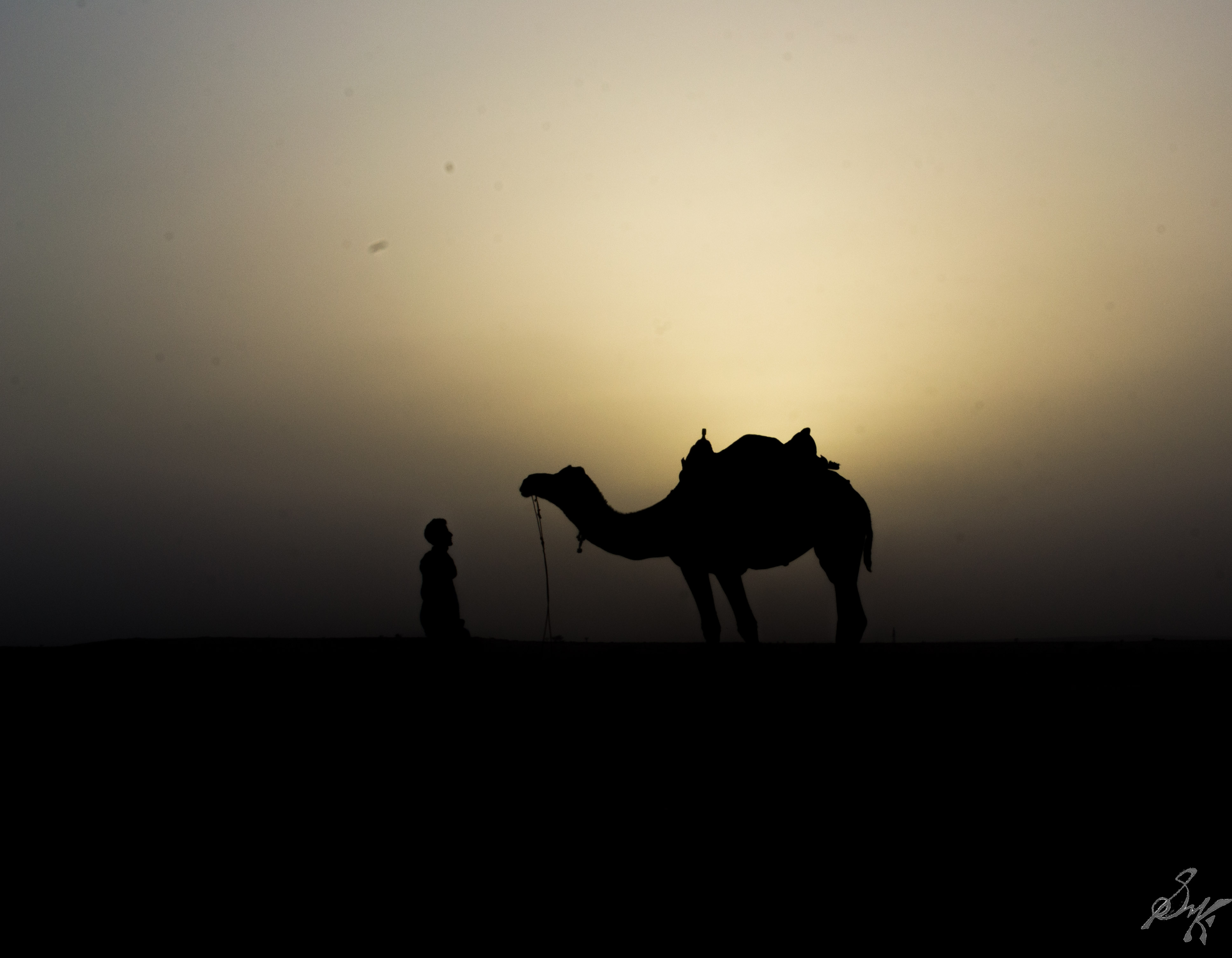 Camel and Man in Thar Desert India shot in silhouette