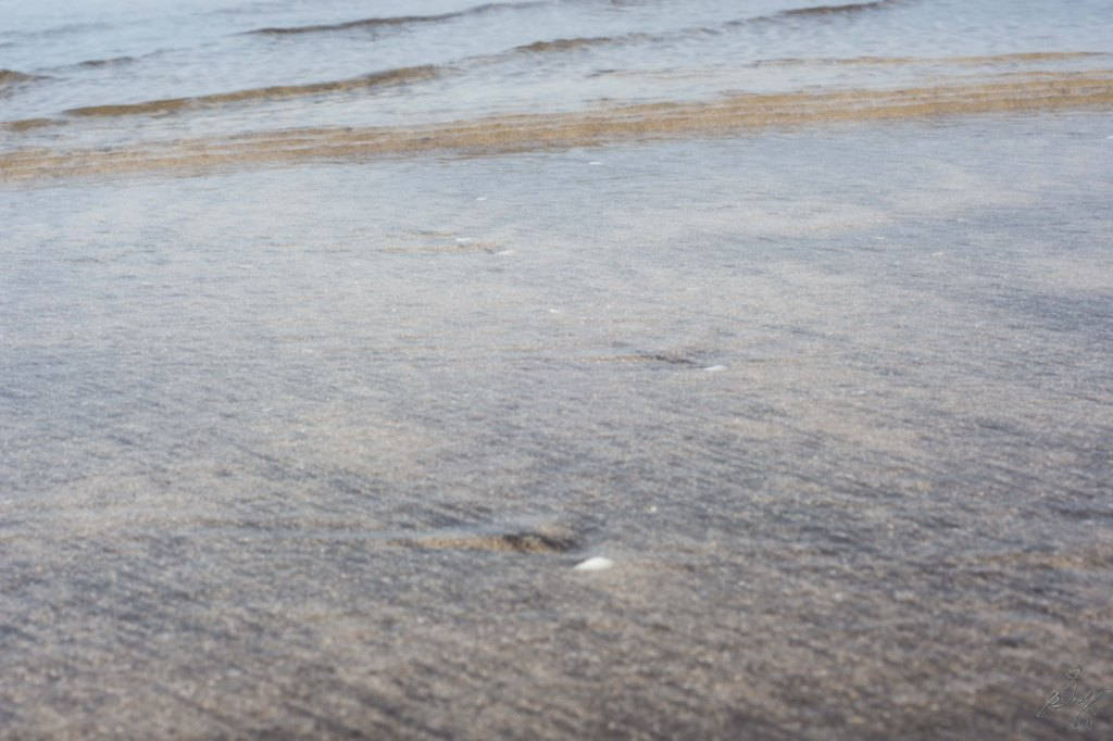 Clear Water at the Diveagar Beach