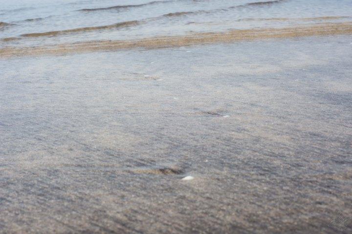 Clear Water at the Diveagar Beach