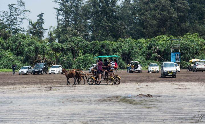 Horse drawn Tongas on DIveagar Beach