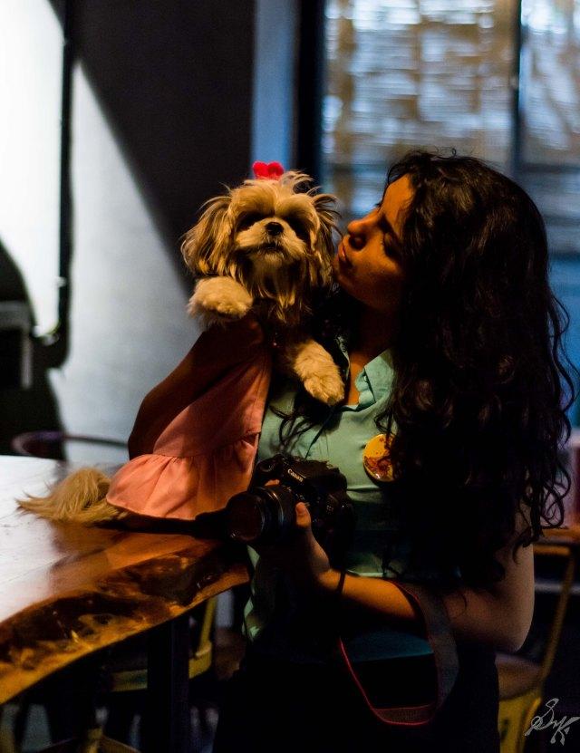 Shih Tzu, Cute, Fluffy, Owner