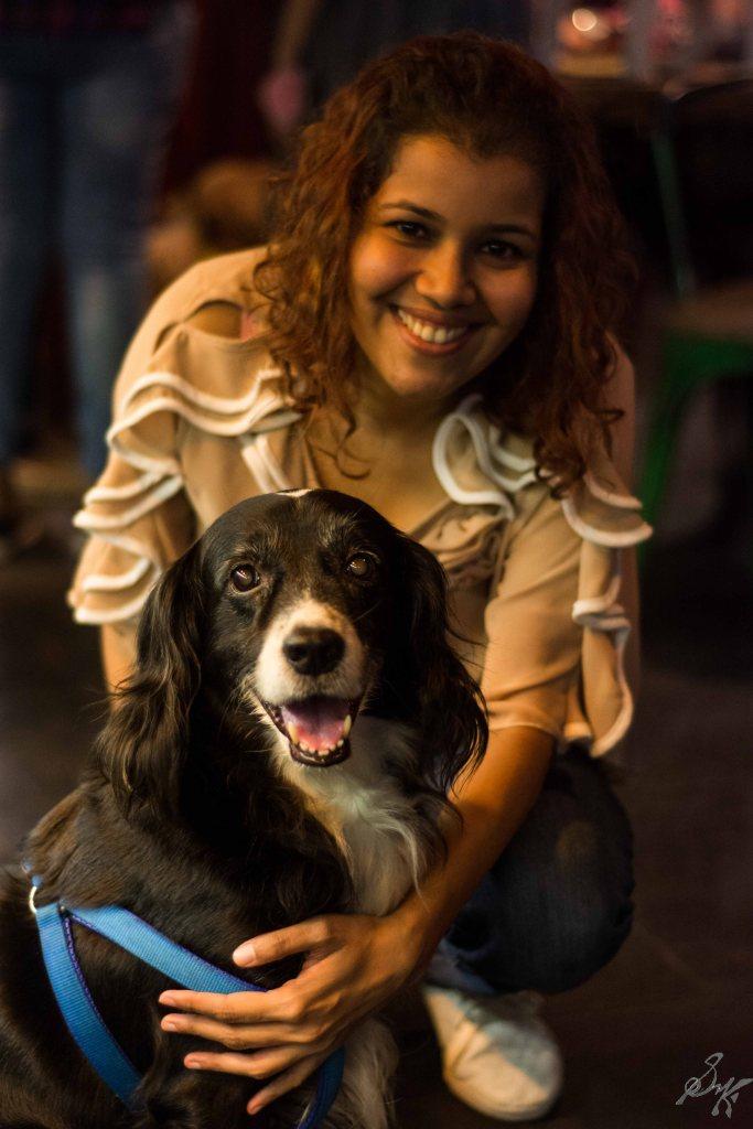 Border Collie, Dog
