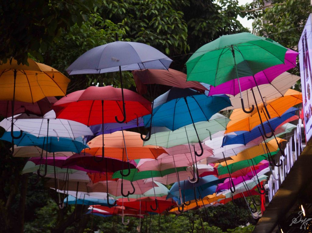 Umbrellas in a street in Ho Chi Minh City