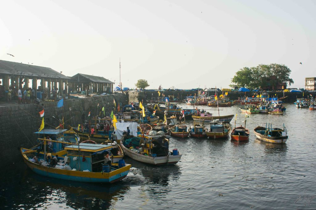 Fishing Trawlers in the dock, Sassoon Docks, Mumbai, India