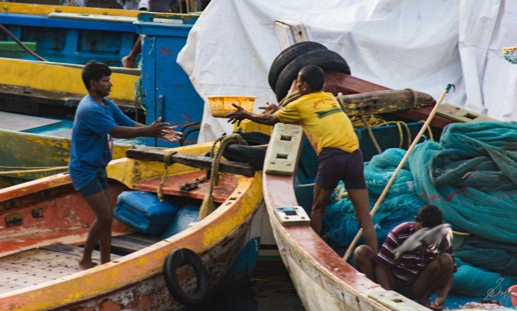 Basket transfer in progress , Sassoon Docks, Mumbai, India